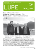 Lupe_1_2014