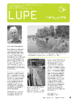 Lupe_2_2011